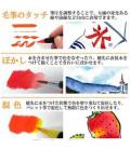 Akashiya Watercolor Brush Pen Sai 5 Colors Set (Winter)