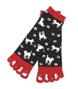 Five fingers socks for women – Kurochiku (Kyoto) – Mizutama Model – (one size 23-25cm)
