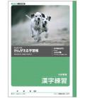 Exercise book for practising Kanjis- 150 kanji per page