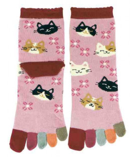 Five finger socks for women - Kurochiku (Kyoto)- Nekodukushi Model (One size 23-25 cm)