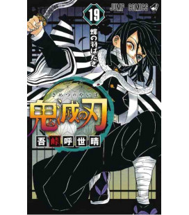 Kimetsu no Yaiba (Demon Slayer) - Vol 19