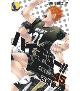 Haikyu!! Vol.45